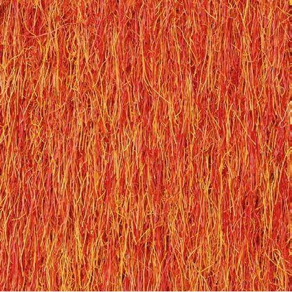 50 X 50 - Orange 031