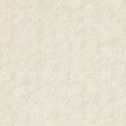 XPORIPS - 0100 White