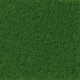 PODIUM - 6432 Forest