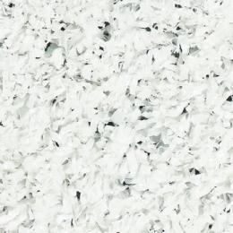 Winter - Weiß